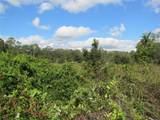 3709 Lithia Pinecrest Road - Photo 5