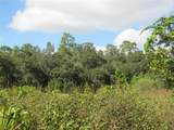 3709 Lithia Pinecrest Road - Photo 8