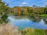 1508 Camphor Cove Drive - Photo 63