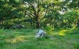 6255 Mangrove Drive - Photo 2