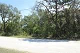 11193 Mountain Mockingbird Road - Photo 5