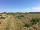 15421 Balm Wimauma Road - Photo 1