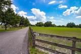 Trapnell Road - Photo 5