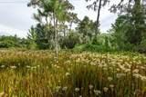 13155 Seminole Trail - Photo 14