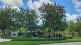 3576 Pine Ribbon Drive - Photo 49