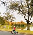 5966 Lake Victoria Drive - Photo 93