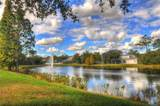 15435 Osprey Glen Drive - Photo 31