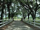 11427 Boyette Road - Photo 27