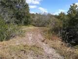 11841 Balm Riverview Road - Photo 5