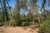 2951 Eagles Nest Drive - Photo 6