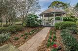 3228 Harvest Moon Drive - Photo 59