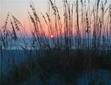 7625 Sun Island Drive - Photo 45
