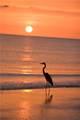 7625 Sun Island Drive - Photo 46