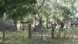 Ranch Road - Photo 9