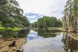 3004 Magdalene Woods Drive - Photo 5