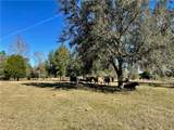 31501 Reed Road - Photo 6
