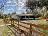 37435 Phelps Road - Photo 16