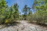 7941 Sycamore Drive - Photo 61