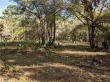 13651 Foss Groves Path - Photo 6