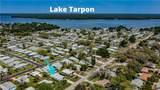 193 Lake Tarpon Drive - Photo 40