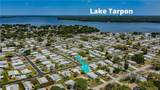 193 Lake Tarpon Drive - Photo 42