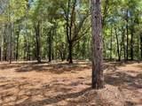 11900 Pine Oak Terrace - Photo 4