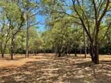 11900 Pine Oak Terrace - Photo 6