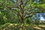 15355 Serengeti Boulevard - Photo 10