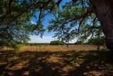 15355 Serengeti Boulevard - Photo 12