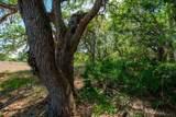 15355 Serengeti Boulevard - Photo 13