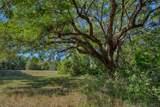 15355 Serengeti Boulevard - Photo 16