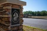 15355 Serengeti Boulevard - Photo 2
