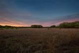 15355 Serengeti Boulevard - Photo 21