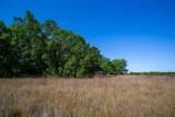 15355 Serengeti Boulevard - Photo 8