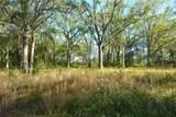 6712 Land O Lakes Boulevard - Photo 7