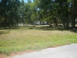 23734 Forest View Drive - Photo 5