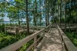 4561 Roanoak Way - Photo 47
