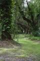 1205 Lakewood Drive - Photo 73
