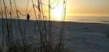 744 Bay Esplanade - Photo 50