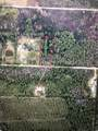 Swamp Deer Road - Photo 1