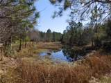 120 Volusian Forest Trail - Photo 4