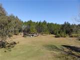 120 Volusian Forest Trail - Photo 43