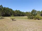 120 Volusian Forest Trail - Photo 5