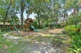 407 Pine Tree Road - Photo 31
