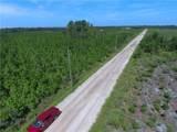 1160 County Road 204 Road - Photo 44
