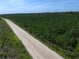1160 County Road 204 Road - Photo 45