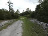 None Rainbow Lake Lane - Photo 10