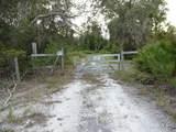 None Rainbow Lake Lane - Photo 7