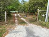 39033 Forest Drive - Photo 1
