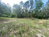 39033 Forest Drive - Photo 8